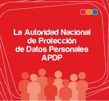 Informe APDP 2014